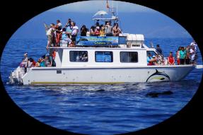 Catamarán Nashira Uno
