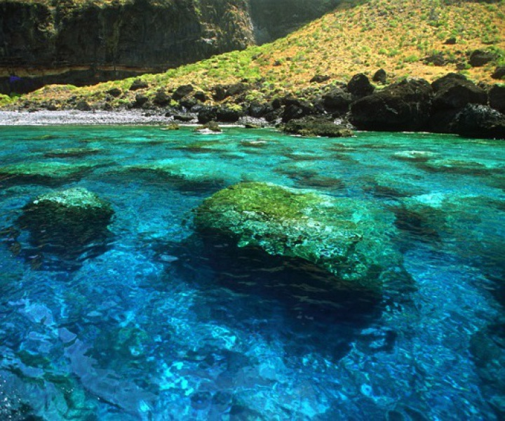 excursiones maritimas tenerife